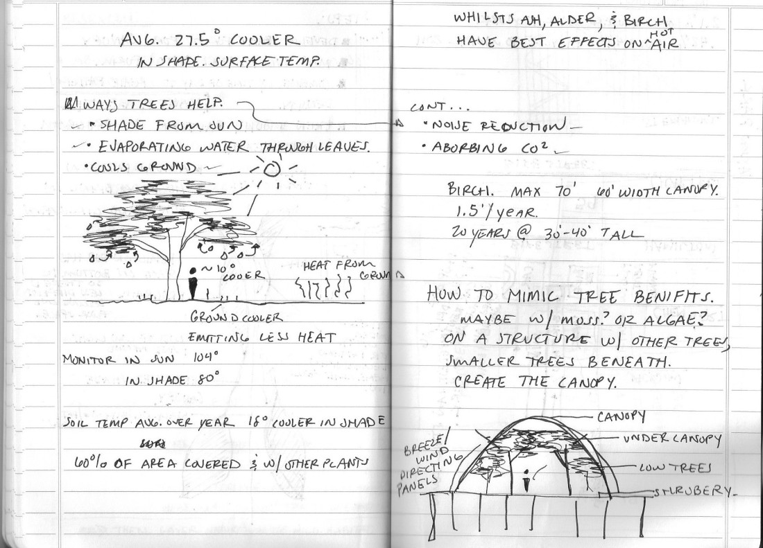 Tree thoughts